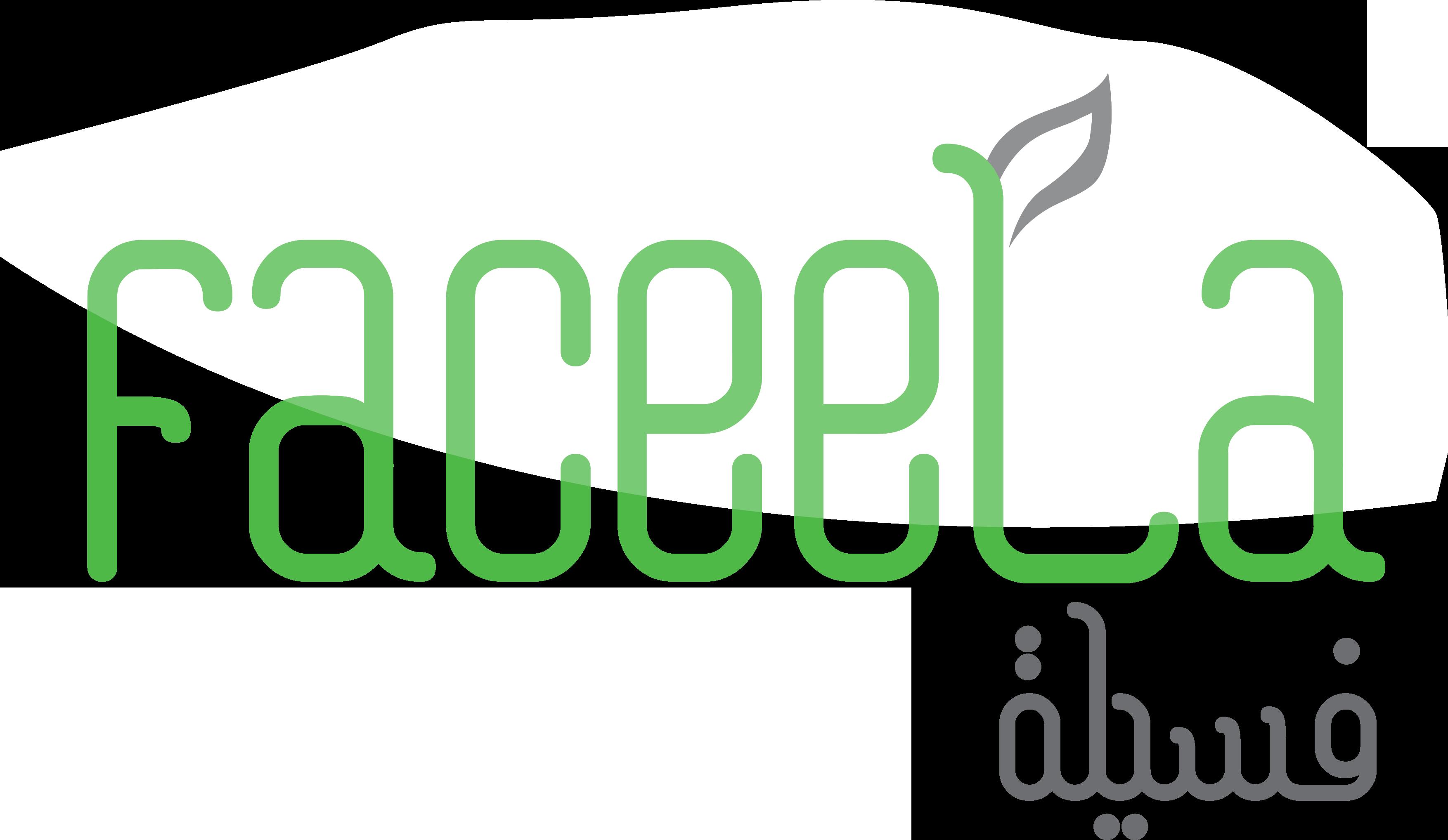 Faceela Business Solutions